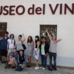 al_museo_del_vino